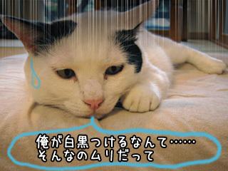 Shirokuro0710_2