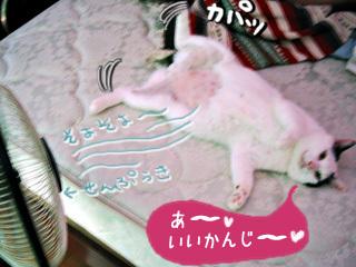 Shirokuro0710_3