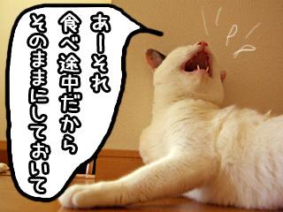 Shirokuro0710_5