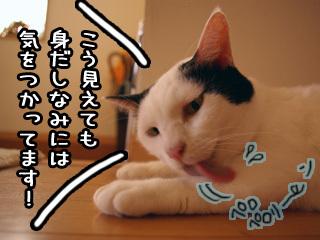 Shirokuro0710_6_2