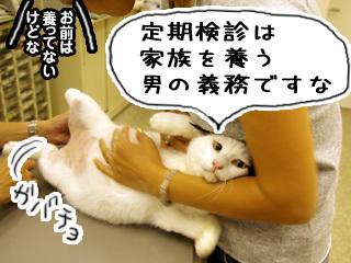 Shirokuro0710_7