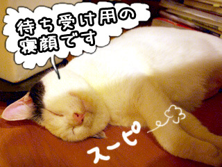 Shirokuro0710_9