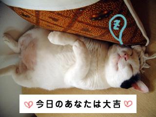 Shirokuro0711_1