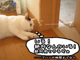 Shirokuro0711_3