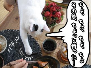 Shirokuro0711_4