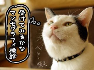 Shirokuro0711_8