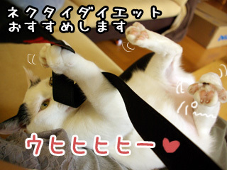 Shirokuro0711_9