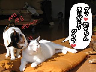 Shirokuro0712_10