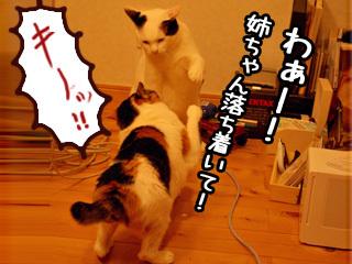 Shirokuro0712_11