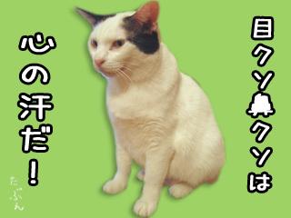 Shirokuro0712_4