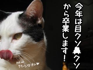 Shirokuro0801_1