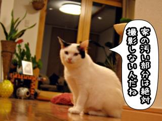 Shirokuro0801_11