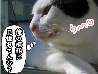 Shirokuro0801_12
