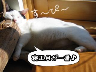 Shirokuro0801_2