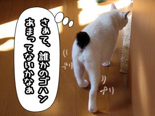 Shirokuro0801_4
