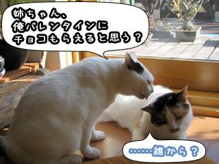 Shirokuro0802_4