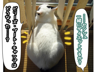 Shirokuro0802_5