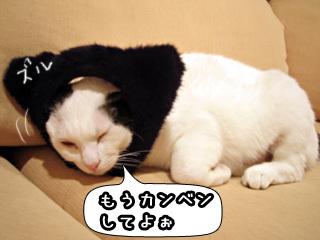 Shirokuro0803_4