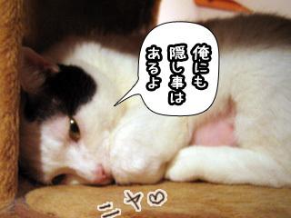 Shirokuro0803_7