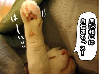 Shirokuro0805_8