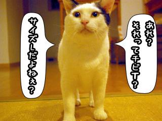 Shirokuro0806_3
