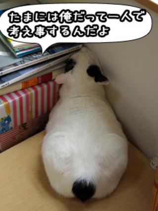 Shirokuro0807_1