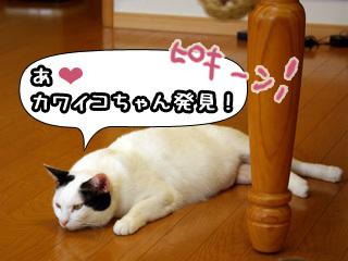 Shirokuro0807_2