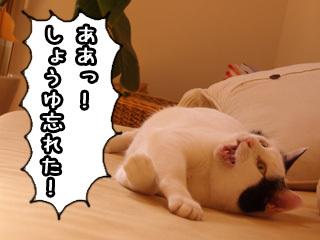Shirokuro0807_6
