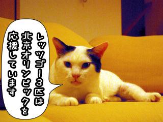Shirokuro0807_9