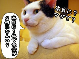 Shirokuro0808_6
