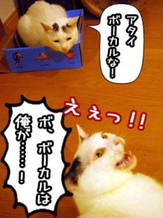 Shirokuro0808_9