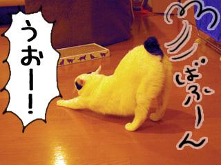 Shirokuro0808_2
