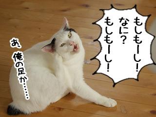 Shirokuro0810_2