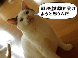 Shirokuro0810_3