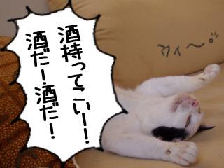 Shirokuro0810_6_2