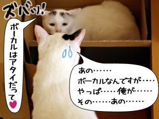 Shirokuro0810_7