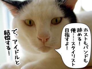 Shirokuro0811_1