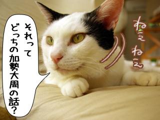 Shirokuro0811_2