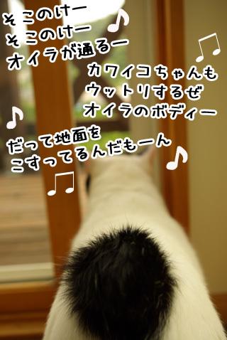 Shirokuro0811_3