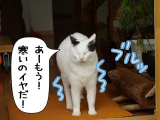 Shirokuro0811_5
