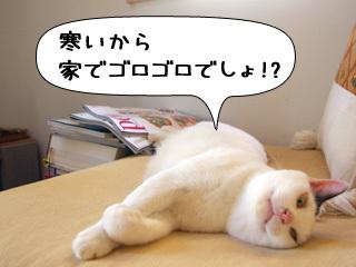 Shirokuro0811_8