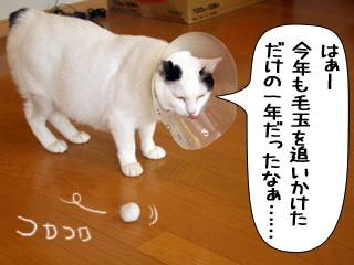 Shirokuro0812_10