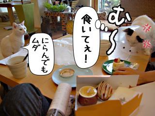 Shirokuro0812_3