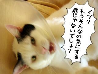 Shirokuro0812_7