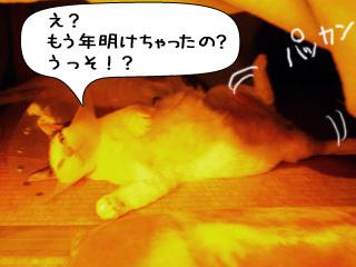 Shirokuro0901_1