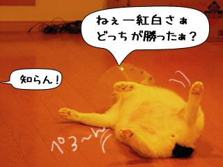 Shirokuro0901_2
