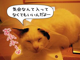 Shirokuro0901_4