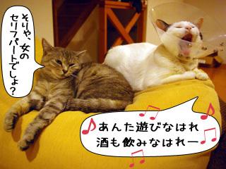 Shirokuro0901_8