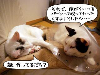 Shirokuro0902_3