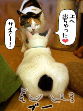 Shirokuro0902_4